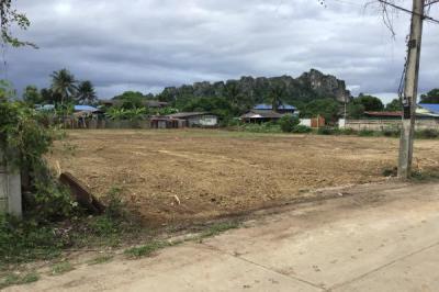 ที่ดิน 2700000 เพชรบุรี เขาย้อย เขาย้อย