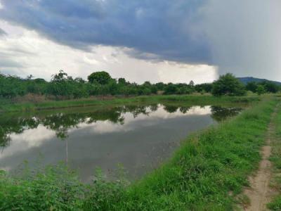 ที่ดิน 2625000 ราชบุรี เมืองราชบุรี เขาแร้ง