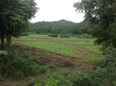 ที่ดิน 15000000 สระบุรี พระพุทธบาท พุคำจาน