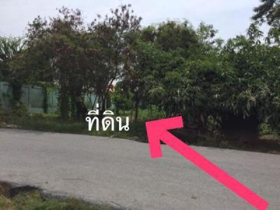 ที่ดิน 10131000 กรุงเทพมหานคร เขตประเวศ ดอกไม้
