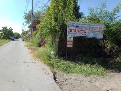 ที่ดิน 1350000 กรุงเทพมหานคร เขตลาดกระบัง ลำปลาทิว