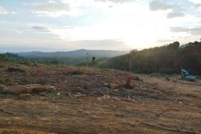 ที่ดิน 100000 ตราด บ่อไร่ หนองบอน
