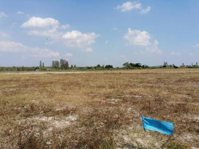 ที่ดิน 200000 สุพรรณบุรี หนองหญ้าไซ ทัพหลวง