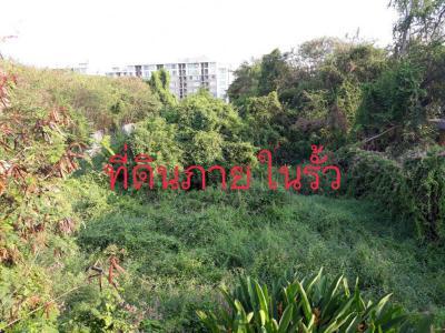 ที่ดิน 9060000 กรุงเทพมหานคร เขตสะพานสูง สะพานสูง