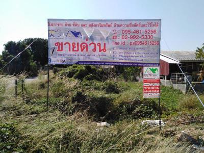 ที่ดิน 770000 สระบุรี เมืองสระบุรี หนองปลาไหล