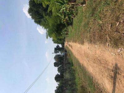 ที่ดิน 8000000 ราชบุรี เมืองราชบุรี ห้วยไผ่