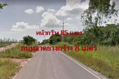 ที่ดิน 26000000 ชลบุรี บ้านบึง หนองอิรุณ