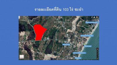 ที่ดิน 154500000 เพชรบุรี ชะอำ บางเก่า