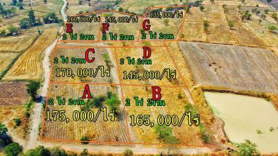 ที่ดิน 135000 กรุงเทพมหานคร เขตบางกอกน้อย ศิริราช