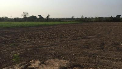 ที่ดิน 7500000 สุโขทัย เมืองสุโขทัย บ้านกล้วย