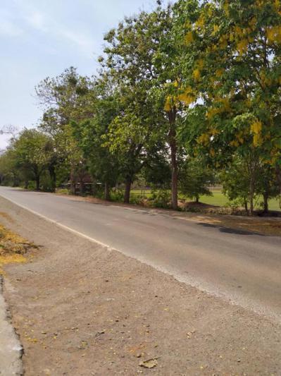 ที่ดิน 1500000 ชัยนาท สรรคบุรี
