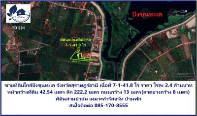 ที่ดิน 17646000 สุราษฎร์ธานี เมืองสุราษฎร์ธานี วัดประดู่