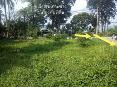 ที่ดิน 0 จันทบุรี เมืองจันทบุรี ท่าช้าง