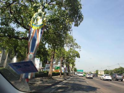 ที่ดิน 0 กรุงเทพมหานคร เขตบางกะปิ คลองจั่น