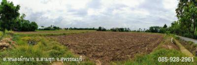 ที่ดิน 2500000 สุพรรณบุรี สามชุก หนองผักนาก