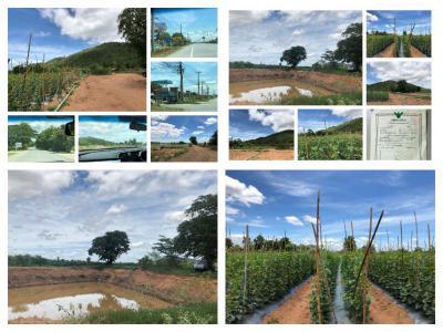 ที่ดิน 2500000 กาญจนบุรี พนมทวน ดอนตาเพชร