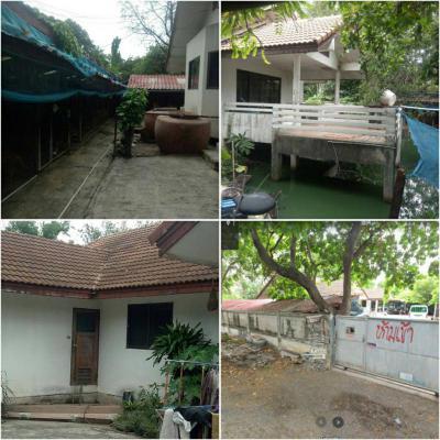 บ้านพร้อมที่ดิน 35000 นนทบุรี ปากเกร็ด บ้านใหม่