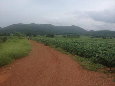 ที่ดิน 166400000 ลพบุรี หนองม่วง ดงดินแดง
