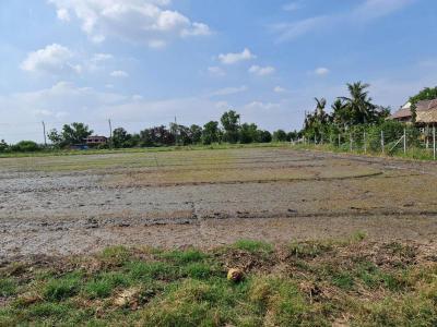 ที่ดิน 574000 นนทบุรี ไทรน้อย คลองขวาง