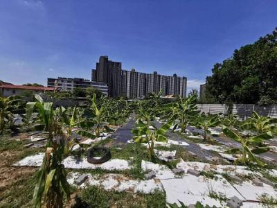 ที่ดิน 67000000 กรุงเทพมหานคร เขตบางซื่อ บางซื่อ