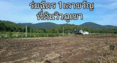 ที่ดิน 290000 กาญจนบุรี เลาขวัญ หนองประดู่