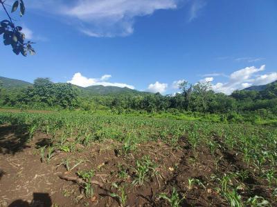 ที่ดิน 8000000 เชียงใหม่ กิ่งอำเภอแม่ออน ออนกลาง