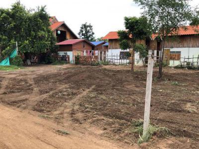 ที่ดิน 650000 กาญจนบุรี เมืองกาญจนบุรี หนองบัว
