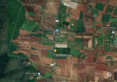 ที่ดิน 200000 ลพบุรี หนองม่วง ดงดินแดง