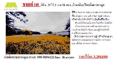 ที่ดิน 82808000 นนทบุรี ไทรน้อย ราษฎร์นิยม